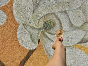 akarizmと花のイラスト