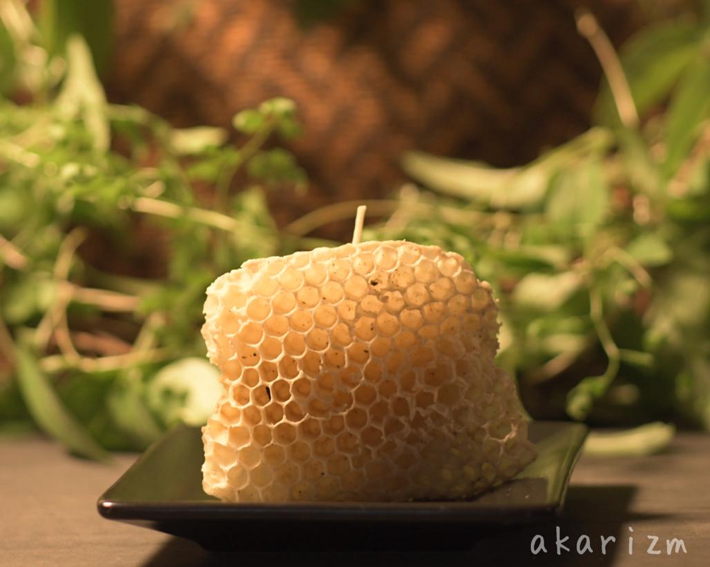 ミツバチの巣で芯をはさむ