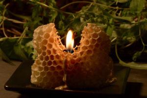 ミツバチの巣に火をつける